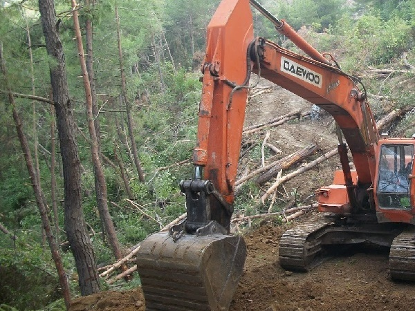 Orman Yolları Yapımı ve Bakımı
